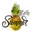 inscription hello summer on pineapple vector image vector image