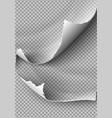 set elements torn paper on transparent vector image vector image