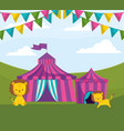 circus tent with lions vector image