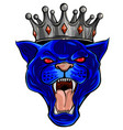 cougar panther mascot head vector image