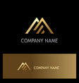 triangle line gold company logo vector image vector image