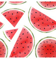 watercolor watermelon seamless pattern vector image