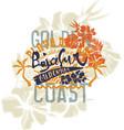 baja california sur coast summer vector image vector image