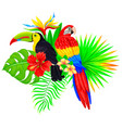 bright tropical composition with parrot toucan vector image vector image