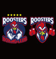 chicken mascot of boxing club vector image vector image