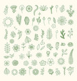 flowers drawn minimalistic bouquet organic vector image