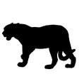 jaguar silhouette vector image