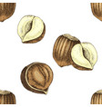 seamless pattern with hand drawn hazelnuts vector image vector image