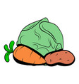 Cabbage carrot potatoe icon cartoon