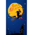 Card of Halloween night - witch and black cat vector image vector image