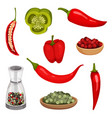 flat set of fresh peppers and condiments vector image