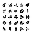 leaf glyph icon set vector image
