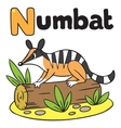 Little numbat for ABC Alphabet N vector image