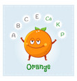 orange fruit vitamins and minerals funny fruit vector image vector image