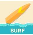 retro flat surf concept design vector image