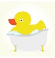 Rubber duck in a bath vector image