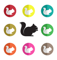group of squirrel vector image