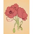 Poppy Flowers Sketch2 vector image