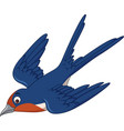 cartoon swallow bird flying vector image vector image