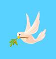dove with an olive branch in its beak flying in vector image