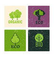 eco and organic labels design with grunge vector image vector image