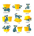 english prepositions place visual aid vector image