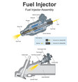 fuel injector vector image vector image
