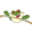 Green Frog On A Twig vector image vector image