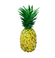 low polygon yelllow pineapple vector image vector image
