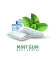 Realistic mint gum vector image