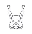 squirrel head line icon sign vector image