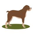 dog boxer vector image
