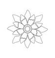 beauty flower floral natural petal vector image