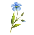 Blue flower of flax vector image vector image