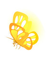butterfly with golden wings isolated on white vector image vector image