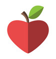 heart shaped red apple vector image vector image