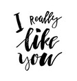 i really like you - happy valentines day card vector image
