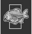Skeleton piranha and a geometric element vector image vector image