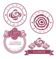Vintage labels with rose flower vector image