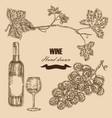 wine set hand drawn bottle wine glass bunch vector image