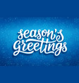 seasons greetings lettering on blue background vector image