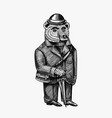 bear with an umbrella in a jacket and hat fashion