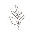 branch tree one line art logo vector image vector image