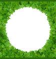 circular frame green leaves vector image vector image