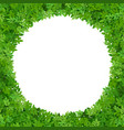 circular frame of green leaves vector image vector image