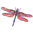 colorful dragonfly with boho pattern elemen vector image vector image