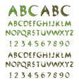 Green alphabet from leaves vector image vector image