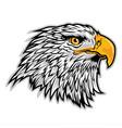 hawk eagle head americas logo mascot on white vector image