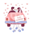 Just Married on Car vector image