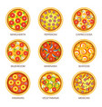 pizza sorts icons templates for italian vector image vector image